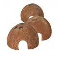 Halve kokosnoot met kleine doorgang