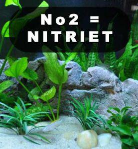 Hoge nitrietwaarde aquarium