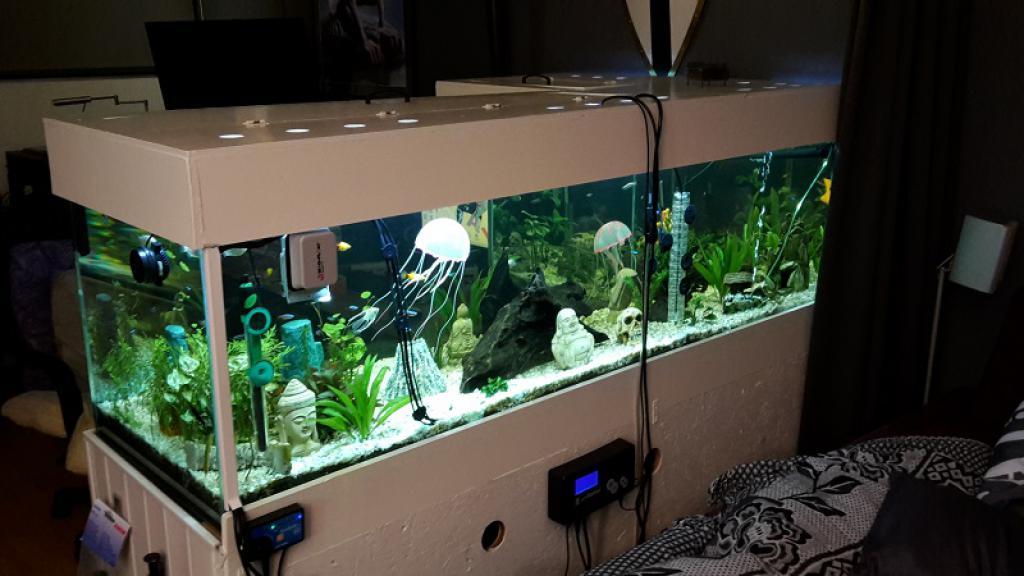 Viscent 600 Liter Aquarium