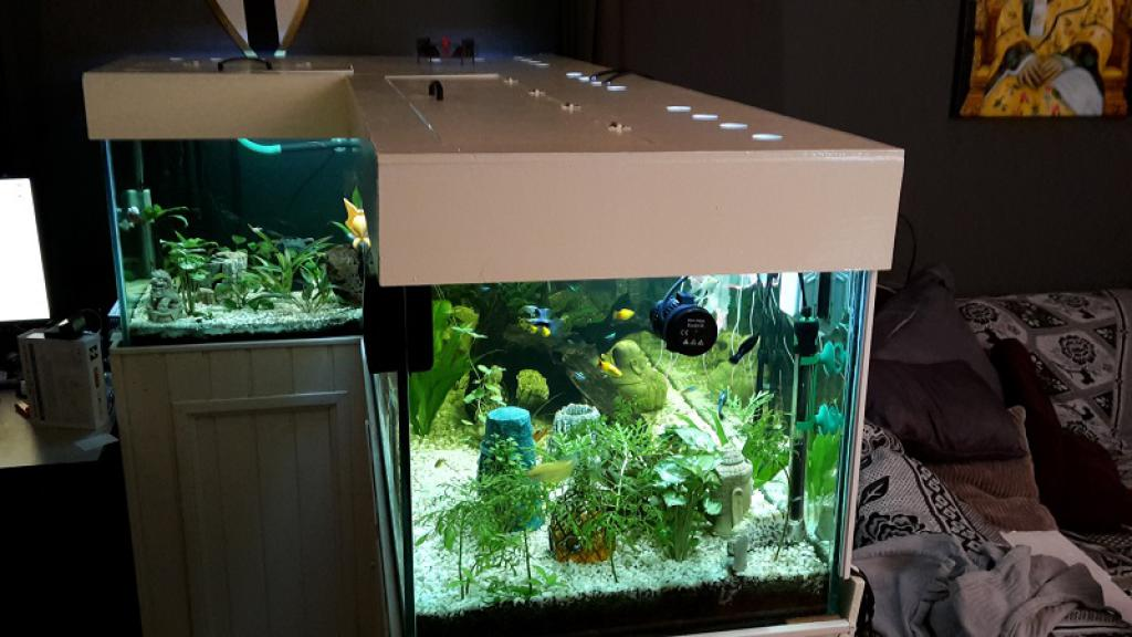 viscent 600 liter aquarium. Black Bedroom Furniture Sets. Home Design Ideas