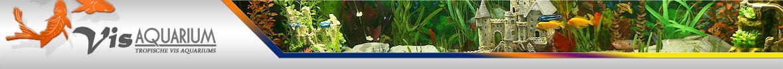 vis aquarium header