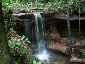Amazone waterval