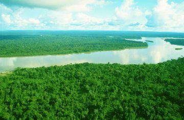 De amazone rivier