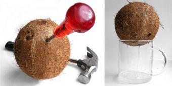 Kokosnootsap